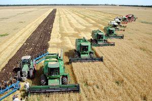 Паювання майна в колективних сільськогосподарських підприємствах