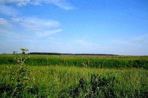 Грошова оцінка сільськогосподарських земель