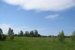 Особливості оренди земельних часток (паїв)