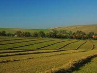 Проект закону про ринок с/г земель доповнять новими обмеженнями і соціальними зобов'язаннями