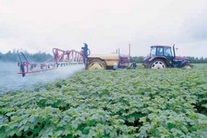 Аграрно-промислова інтеграція
