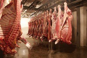 Ринок м'яса