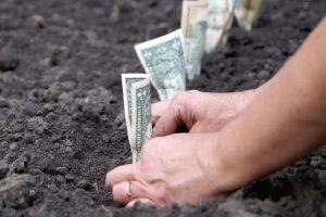 Зміст та склад фіксованого сільськогосподарського податку