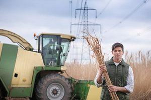 Сплата фіксованого податку сільськогосподарською продукцією